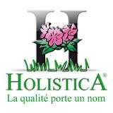 logo holistica